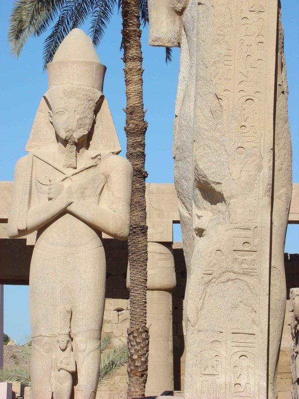 CAIRO02-st..nd-palm