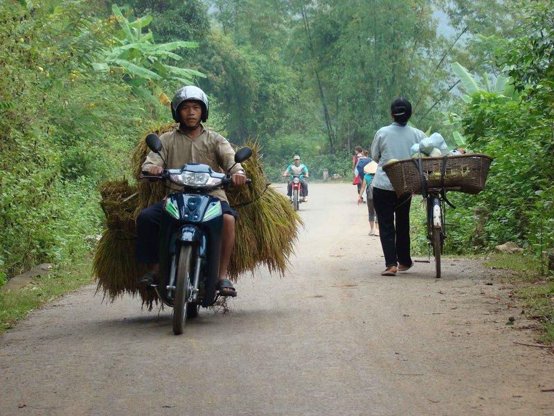 Rice Transportation I