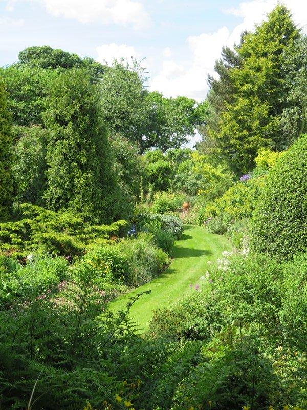 IMG_1128 Garden view