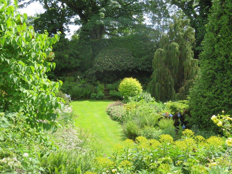 IMG_1109 garden view