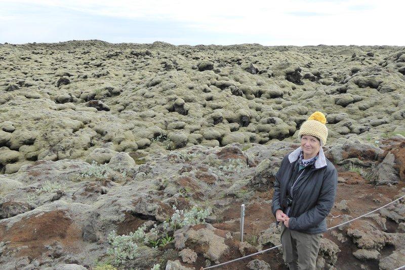 Moss covered volcanic rocks