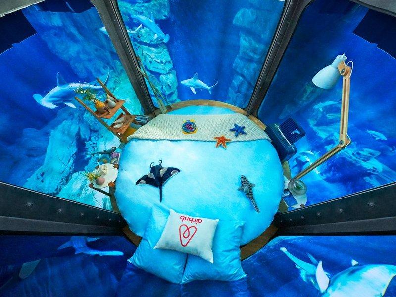 aquarium-room