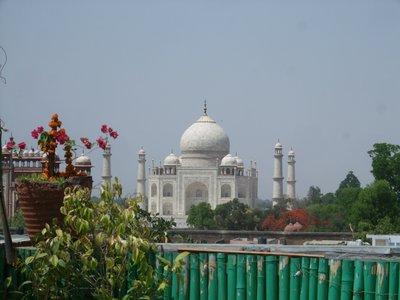 Taj from Hotel