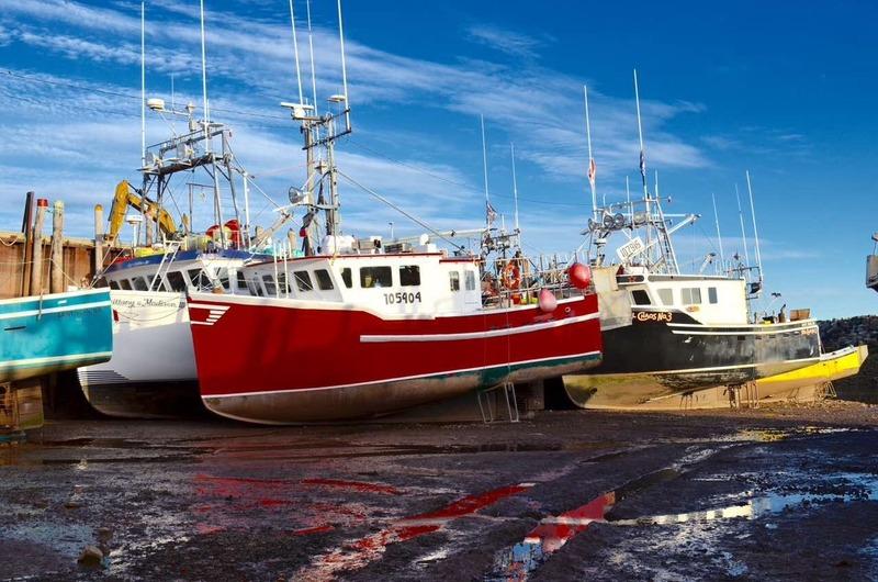 Low tide in Alma harbour
