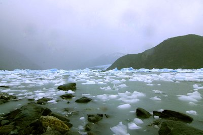 Onelli lake with icebergs