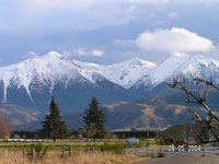Tranz Alpine, South Island