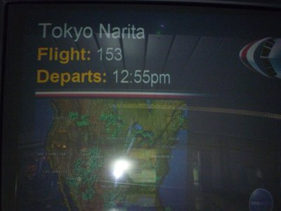 Flight Departure from Chicago to Tokyo