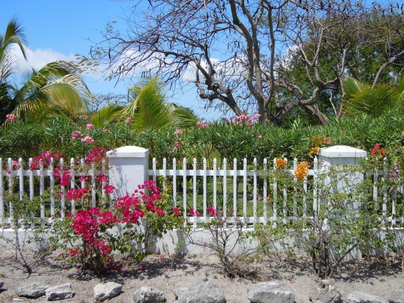 large_Garden.jpg
