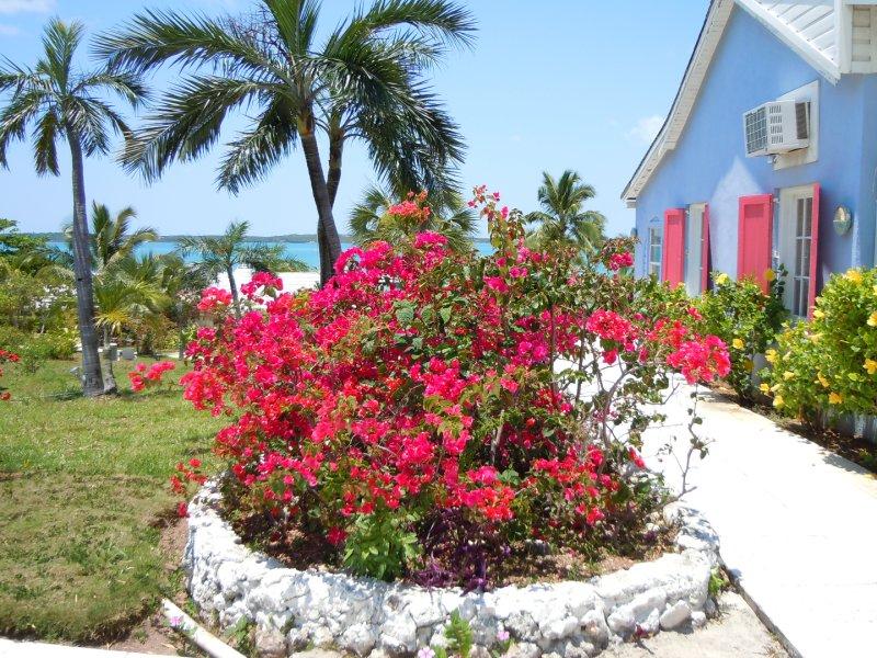 large_Romora_Bay_garden.jpg