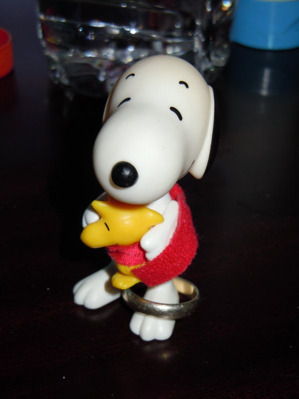 large_Snoopy_get..he_ring.jpg