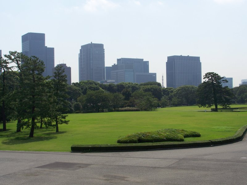 Tokyo Skyline from Imperial Gardens