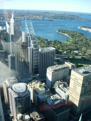 sydney tower-utsikt
