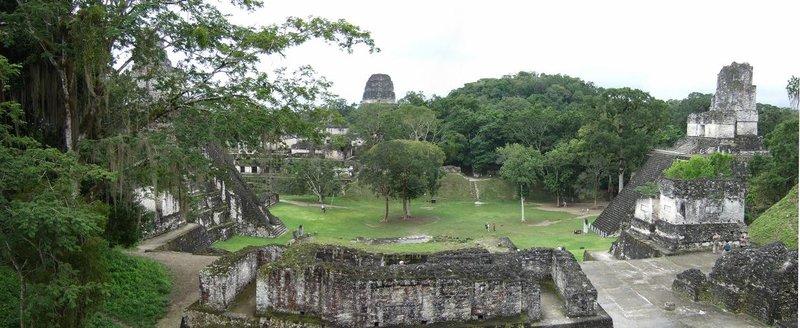 Tikal Panorama