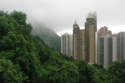 Fog in Hong Kong