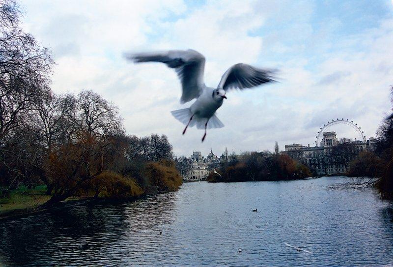 Instantâneo em Londres