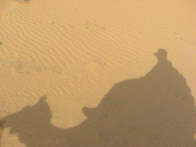 Camel_Safari_039.jpg