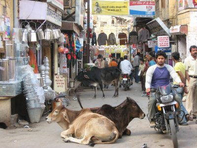 Jaisalmer_070.jpg
