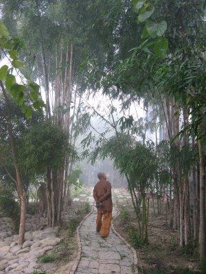 Monk in Viet Monastery