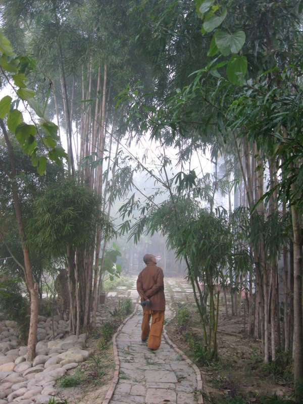 Monk in Viet Monastery