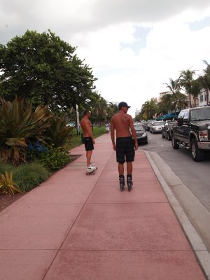 Florida_P_030.jpg