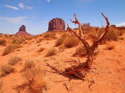 Grand_Canyon_P_440.jpg