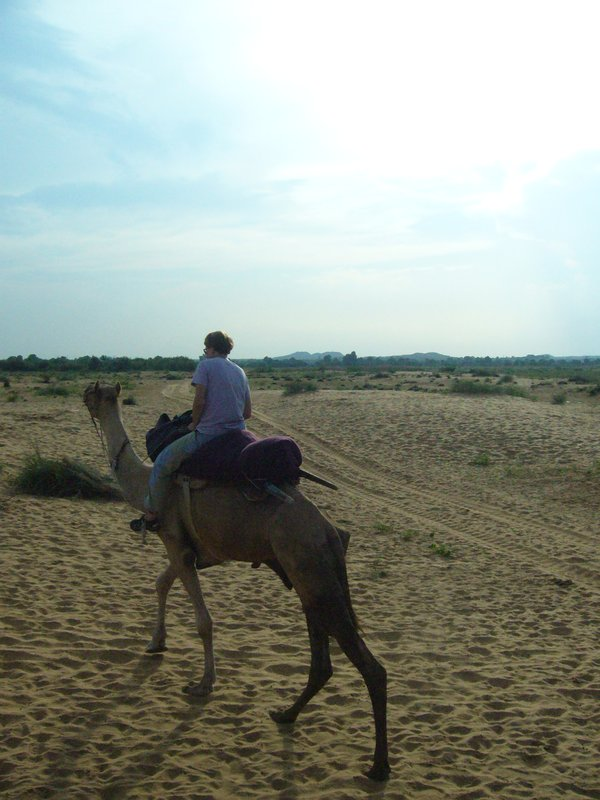 Barca on Camel