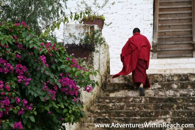 Monk at Dzong