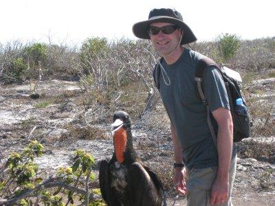 Friendly Frigate Bird