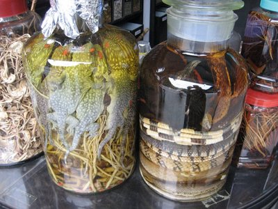 Lizard and Bird jars