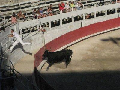 Bull-Game Leap