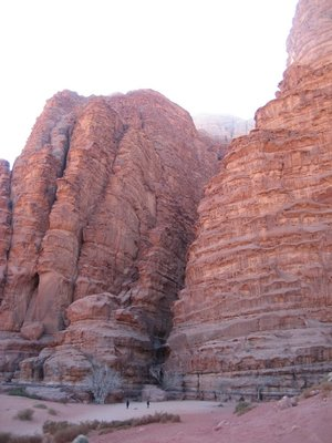 Canyon in Wadi Rum