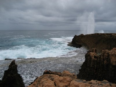 Carnarvon - Blowholes - 06