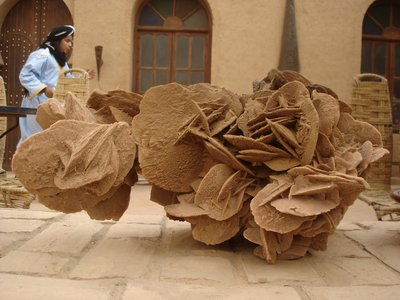 A Desert Rose - Mother Nature le Artistè