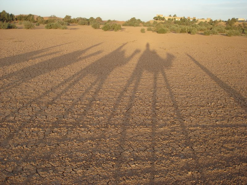 Shadows of Our Desert Caravan
