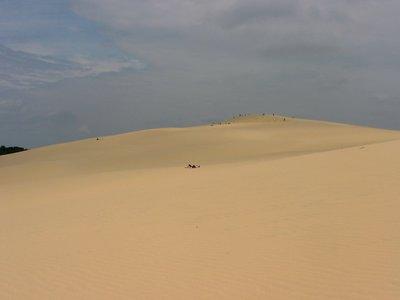 Dune de Pylas, près d'Arcachon