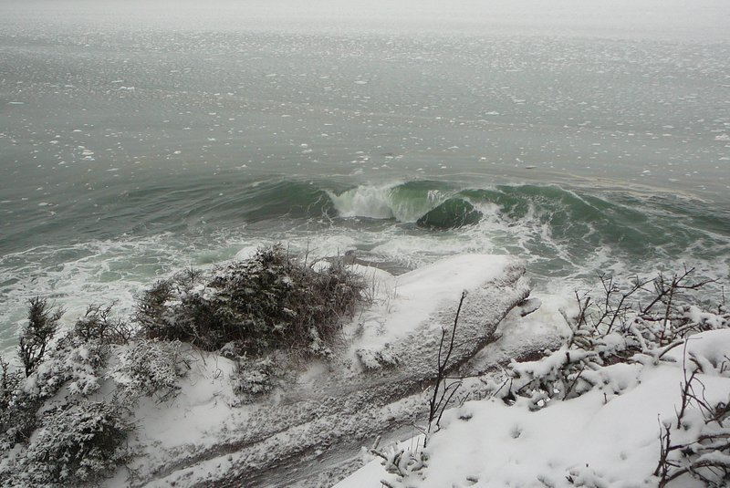 Winter waves