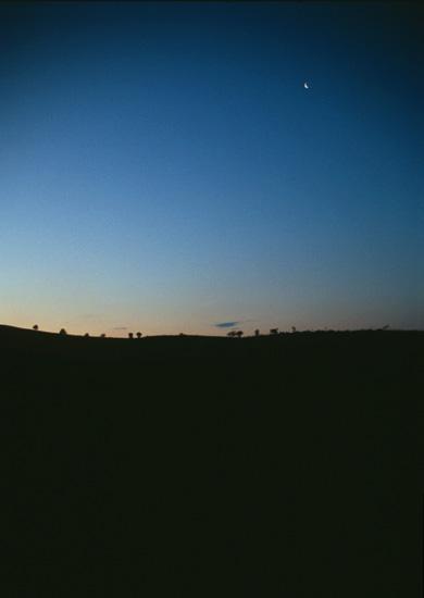 Pre-dawn moon