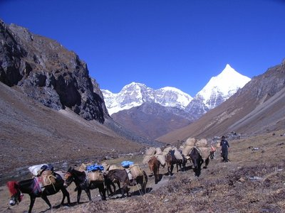 Trekking in Bhutan