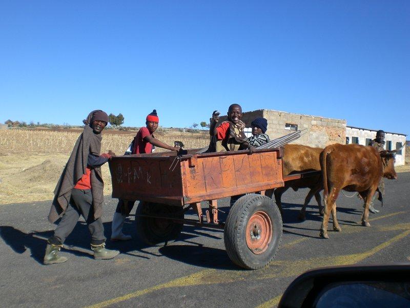 Vervoersmiddel in Lesotho