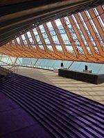 Sydney1---..-Carpet
