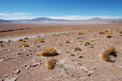 Bolivia, approaching Laguna Colarada