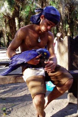 Mario and the blue Macaw