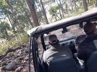 Gypsy, our transport in Bijrani Zone