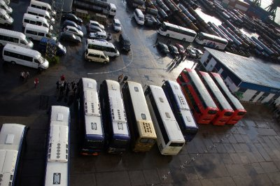 Buses ready for work - St. Petersberg Russia Port