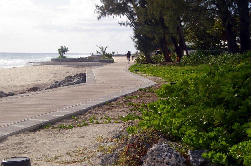 The New South Coast Boardwalk