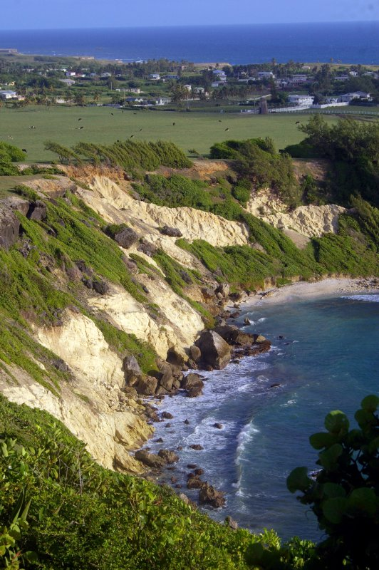 The Cove at Coves Bay and beyone