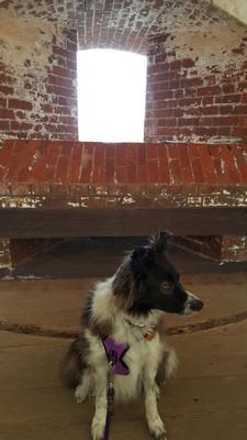 FortPulaski1.jpg