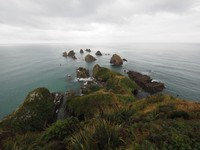 New Zealand - Point Nugget