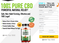 What Is The Best Results For Feel Elite CBD Gummies?