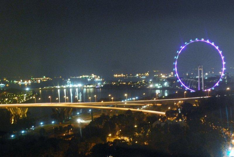 Singapore Flyer after dark